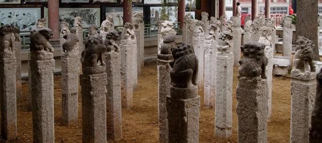 Musée de la forêt de stèle